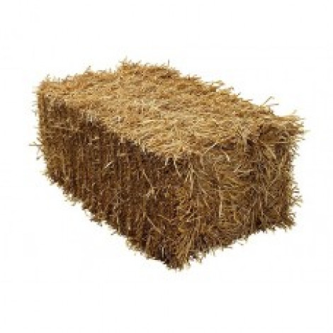 Straw - Full Square Bail
